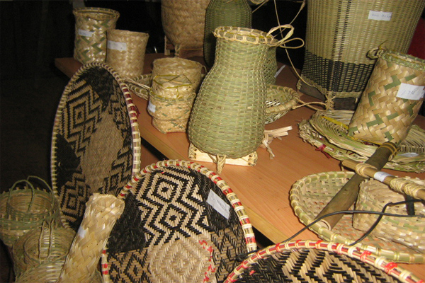 Income generation for ethnic minority groups in Konplong district, Kon Tum province through bamboo & rattan development